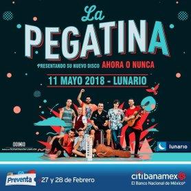 large_Flyer_La_Pegatina