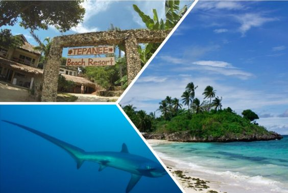 isla malapascua (1).jpg